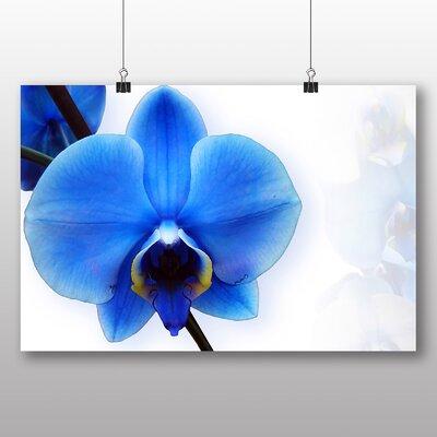 Big Box Art Blue Orchid Flower Graphic Art on Canvas