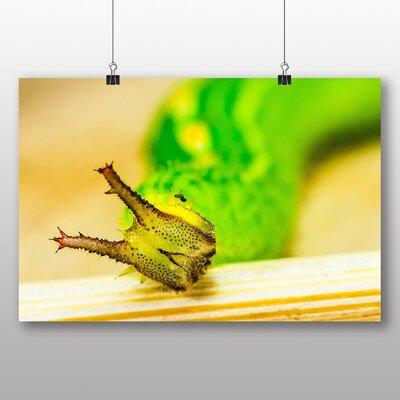 Big Box Art Caterpillar No.2 Photographic Print Wrapped on Canvas