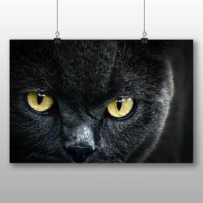 Big Box Art Cat Eyes No.4 Photographic Print Wrapped on Canvas