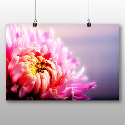 Big Box Art Chrysanthemum Pink Flower Photographic Print on Canvas