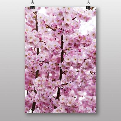 Big Box Art Cherry Blossom Tree No.4 Photographic Print