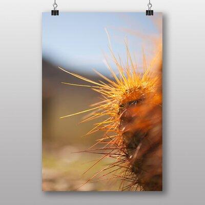 Big Box Art 'Cactus Plant Spikes' Photographic Print