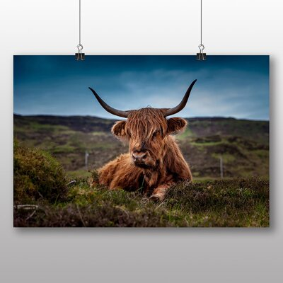 Big Box Art Cow Photographic Print on Canvas
