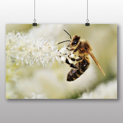 Big Box Art Bumble Bee Photographic Print Wrapped on Canvas