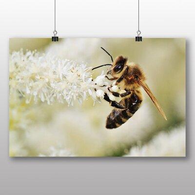 Big Box Art Bumble Bee Photographic Print