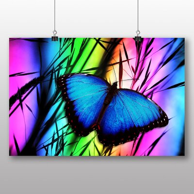 Big Box Art Butterfly No.5 Graphic Art Wrapped on Canvas