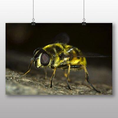 Big Box Art Bumble Bee No.5 Photographic Print on Canvas