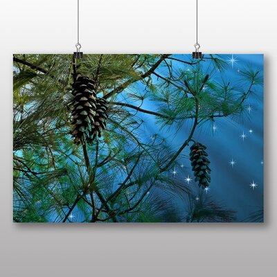 Big Box Art Conifer Tree Pine Cones Photographic Print
