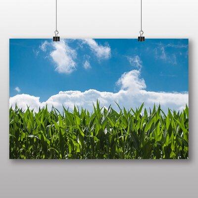 Big Box Art 'Corn and Blue Sky' Photographic Print