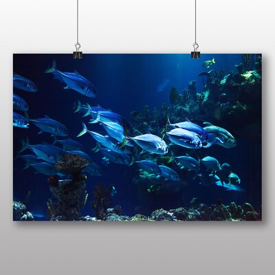 Big Box Art Coral Reef Fish No.3 Photographic Print on Canvas