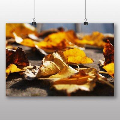 Big Box Art 'Autumn Leaves on the Ground' Photographic Print