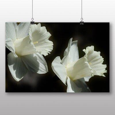 Big Box Art Daffodil White Flower Photographic Print on Canvas