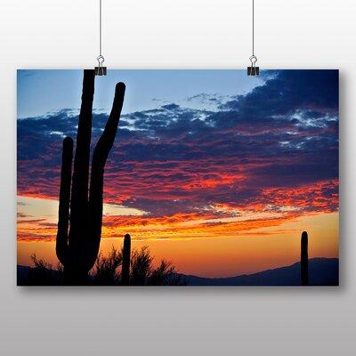 Big Box Art Cactus Sunset Photographic Print