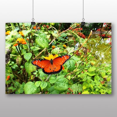 Big Box Art Butterfly No.3 No.2 Photographic Print on Canvas