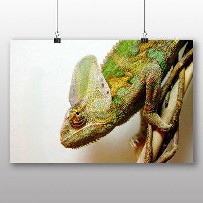 Big Box Art Chameleon No.2 Photographic Print