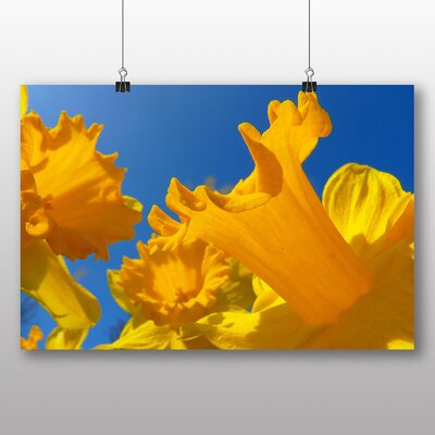 Big Box Art Daffodil Yellow Flowers Graphic Art on Canvas