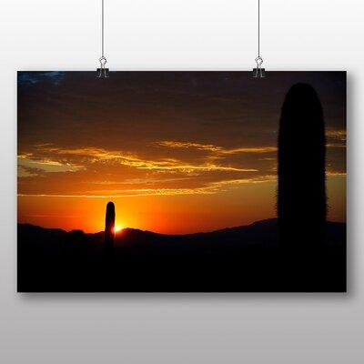 Big Box Art Cactus Sunset No.4 Photographic Print