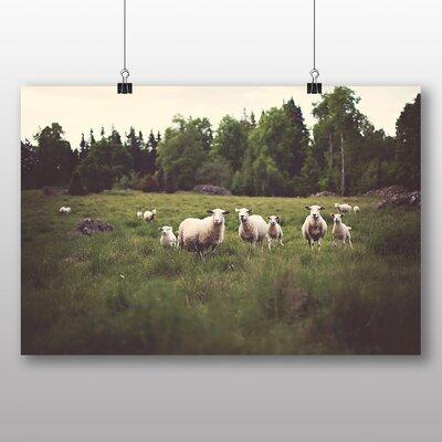 Big Box Art Curious Sheep Photographic Print on Canvas
