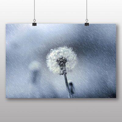 Big Box Art Dandelion in The Rain No.2 Photographic Print