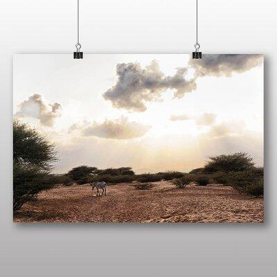 Big Box Art Djibouti Africa Zebra Photographic Print on Canvas