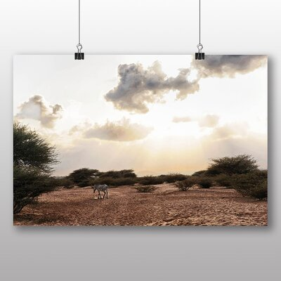 Big Box Art Djibouti Africa Zebra Photographic Print