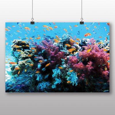 Big Box Art Coral Reef Fish Photographic Print