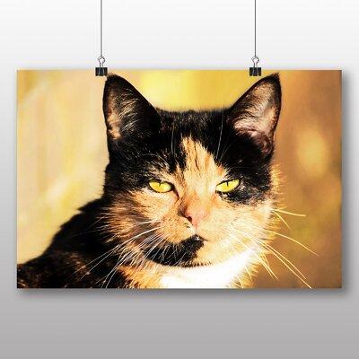 Big Box Art Cat No.6 Photographic Print