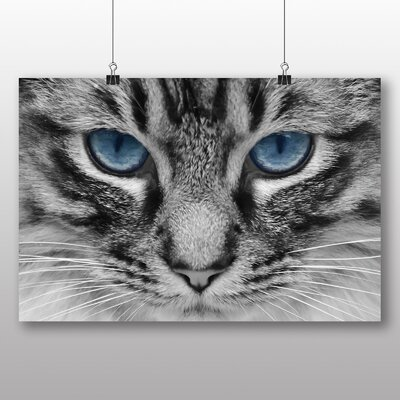 Big Box Art Cat Eyes No.6 Photographic Print Wrapped on Canvas
