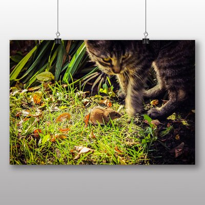 Big Box Art Cat and Mouse Photographic Print Wrapped on Canvas