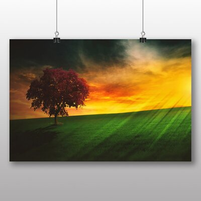 Big Box Art Brazil Sunset and Tree Photographic Print Wrapped on Canvas