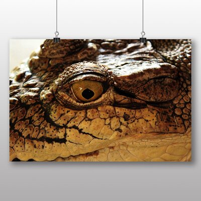 Big Box Art Crocodile Eye Photographic Print Wrapped on Canvas