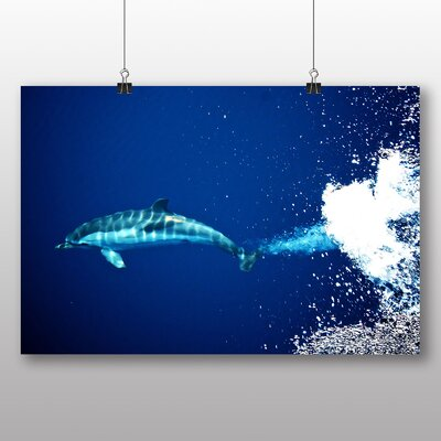 Big Box Art Dolphin No.2 Photographic Print on Canvas