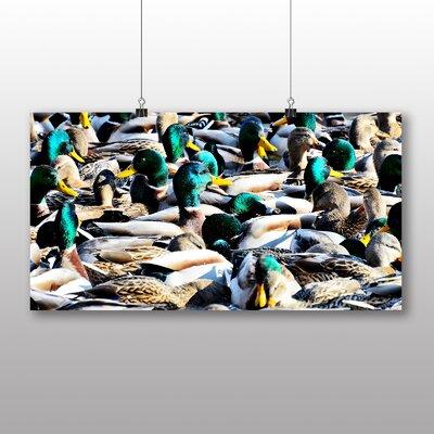 Big Box Art Ducks Photographic Print Wrapped on Canvas