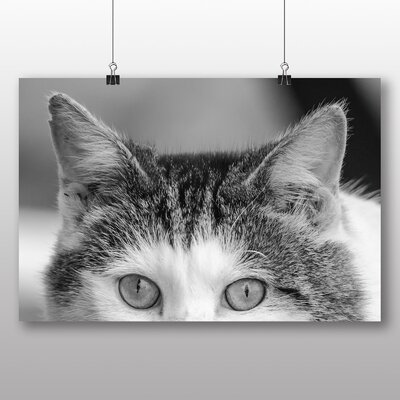 Big Box Art Cat Eyes No.5 Photographic Print on Canvas