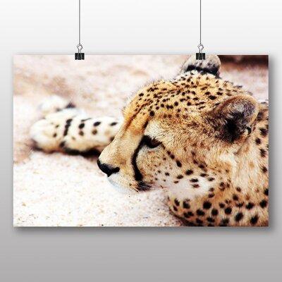 Big Box Art Cheetah No.7 Photographic Print Wrapped on Canvas