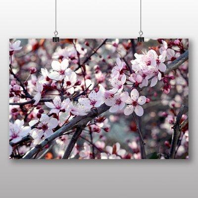 Big Box Art Cherry Blossom Tree No.2 Photographic Print