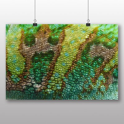 Big Box Art Chameleon No.6 Photographic Print Wrapped on Canvas