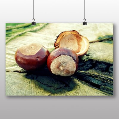 Big Box Art Chestnut Tree Conkers Photographic Print Wrapped on Canvas