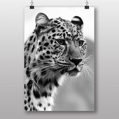 Big Box Art Cheetah No.8 Photographic Print