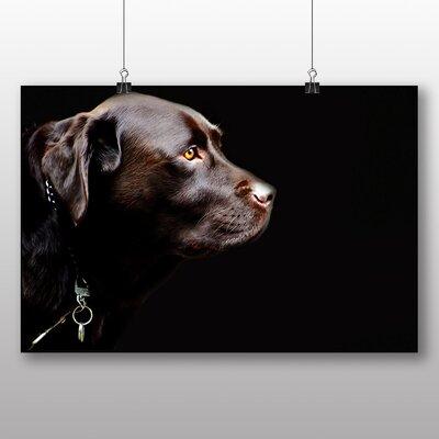 Big Box Art Chocolate Labrador Dog No.2 Photographic Print Wrapped on Canvas