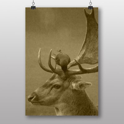 Big Box Art 'Deer and Bird' Photographic Print