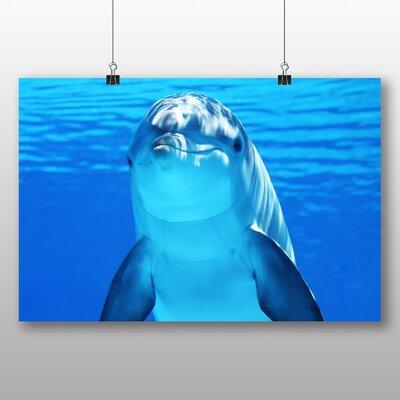 Big Box Art Dolphin Photographic Print