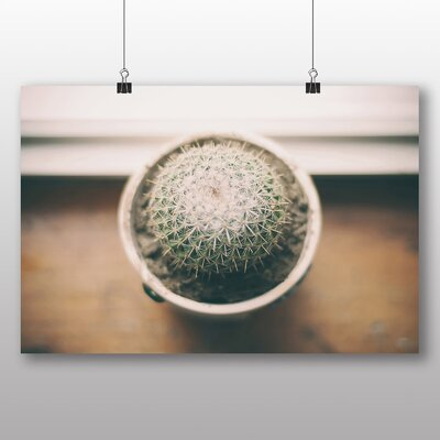 Big Box Art Cactus Cacti Photographic Print Wrapped on Canvas