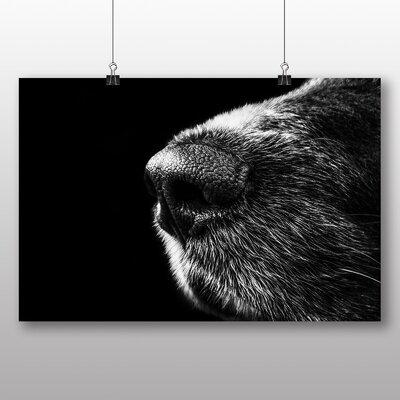 Big Box Art Dog Nose Snout Photographic Print on Canvas