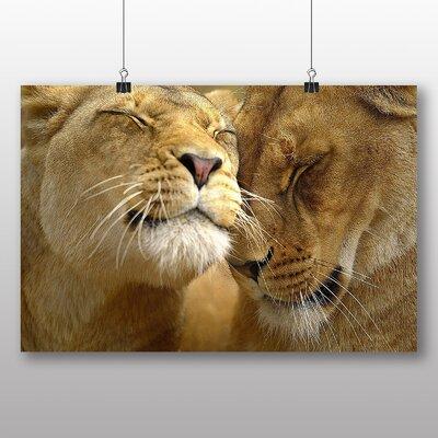 Big Box Art Cuddling Lions No.1 Photographic Print Wrapped on Canvas