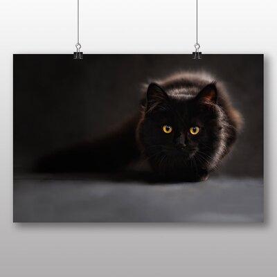 Big Box Art Cat No.1 Photographic Print