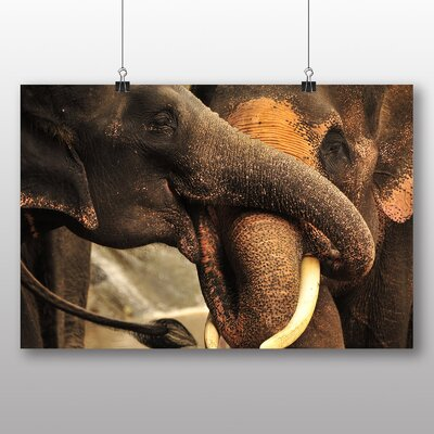 Big Box Art Elephant No.6 Photographic Print Wrapped on Canvas
