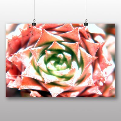Big Box Art Colourful Cactus Flower No.1 Graphic Art on Canvas