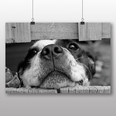 Big Box Art Dog and Fence Photographic Print Wrapped on Canvas