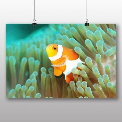 Big Box Art Clownfish Clown Fish No.3 Graphic Art Wrapped on Canvas